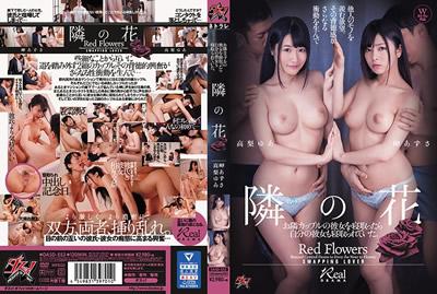 [DASD-553]睡邻居的女友结果自己的女友也被睡走 高梨由爱 岬梓沙