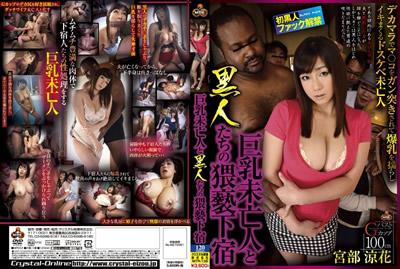 【NITR-135】巨乳寡妇和黒人们的猥亵寄宿 宫部凉花