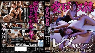 【DTRS-036】          爱玩奴隶女同性恋本多由奈