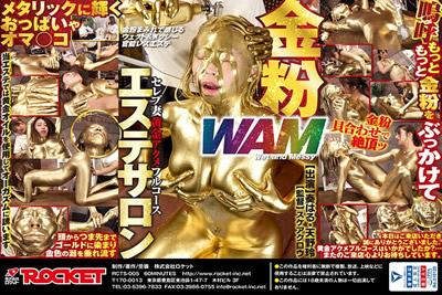 【RCTS-005】  金美容沙龙名人妻子黄金水晶套餐